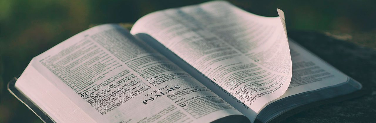 biblia abierta por salmos